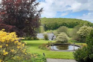 Cae Hir Gardens - the circuar pond and wedding cake tree